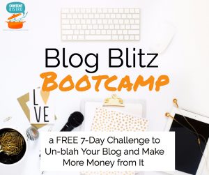7 Days of Blogging Tips and Tricks with the {FREE} Blog Blitz Bootcamp: Everything You Need to Whip Your Blog into the Best {Money-Making} Shape Possible!